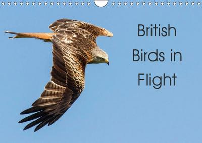 British Birds in Flight (Wall Calendar 2019 DIN A4 Landscape)