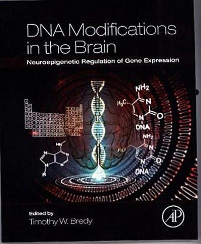 DNA Modifications in the Brain