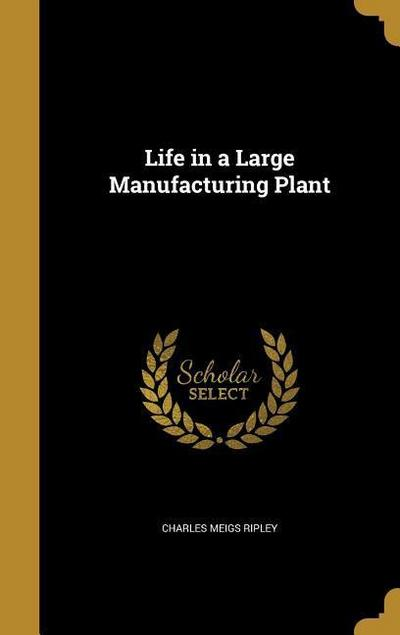 LIFE IN A LARGE MANUFACTURING