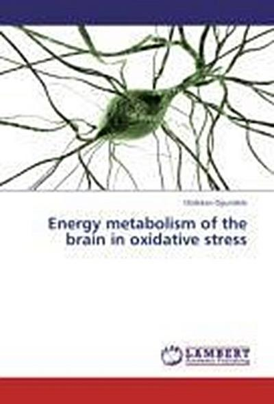 Energy metabolism of the brain in oxidative stress