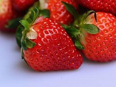 Erdbeeren - 500 Teile (Puzzle)