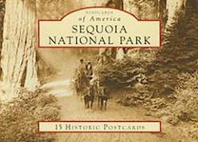 Sequoia National Park: 15 Historic Postcards
