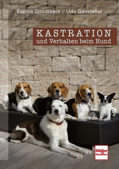 Kastration und Verhalten beim Hund - Eine Entscheidungshilfe