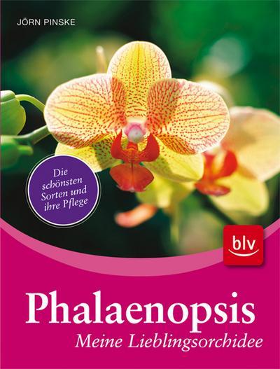 Phalaenopsis - meine Lieblingsorchidee; Die schönsten Sorten und ihre Pflege   ; Deutsch; , 125 farb. abb. -