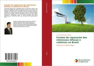 Fundos de reparação dos interesses difusos e coletivos no Brasil