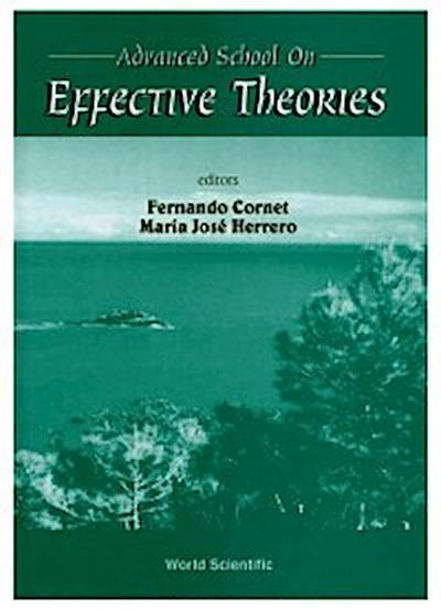 Effective Theories - Proceedings Of The Advanced School