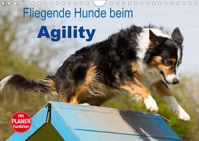 Fliegende Hunde beim Agility (Wandkalender 2020 DIN A4 quer)
