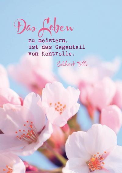 "Eckhart Tolle Postkarten ""Das Leben"""