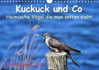 Kuckuck und Co - Heimische Vögel die man selten sieht - Jahresplaner 2019 (Wandkalender 2019 DIN A4 quer)