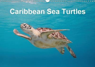 Caribbean Sea Turtles (Wall Calendar 2019 DIN A3 Landscape)