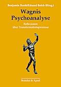 Wagnis Psychoanalyse: Reflexionen über Transformationsprozesse