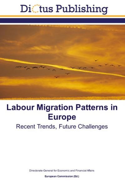 Labour Migration Patterns in Europe