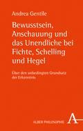 Bewusstsein, Anschauung und das Unendliche bei Fichte, Schelling und Hegel