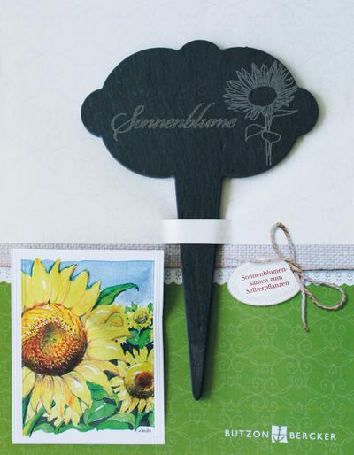 Sonnenblume: Blumenstecker