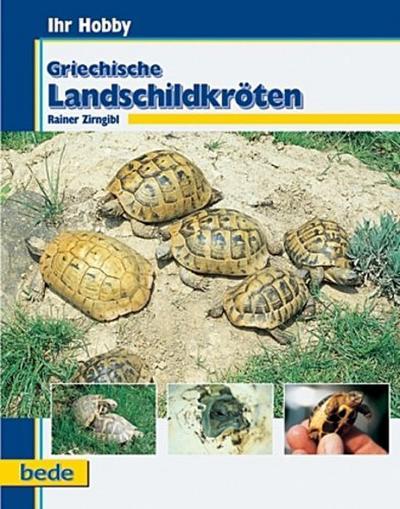 Griechische Landschildkröten. Ihr Hobby von Zirngibl. Rainer (2000) Gebundene Ausgabe