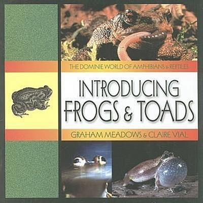 Introducing Frogs & Toads