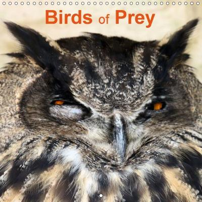 Birds of Prey (Wall Calendar 2018 300 × 300 mm Square)