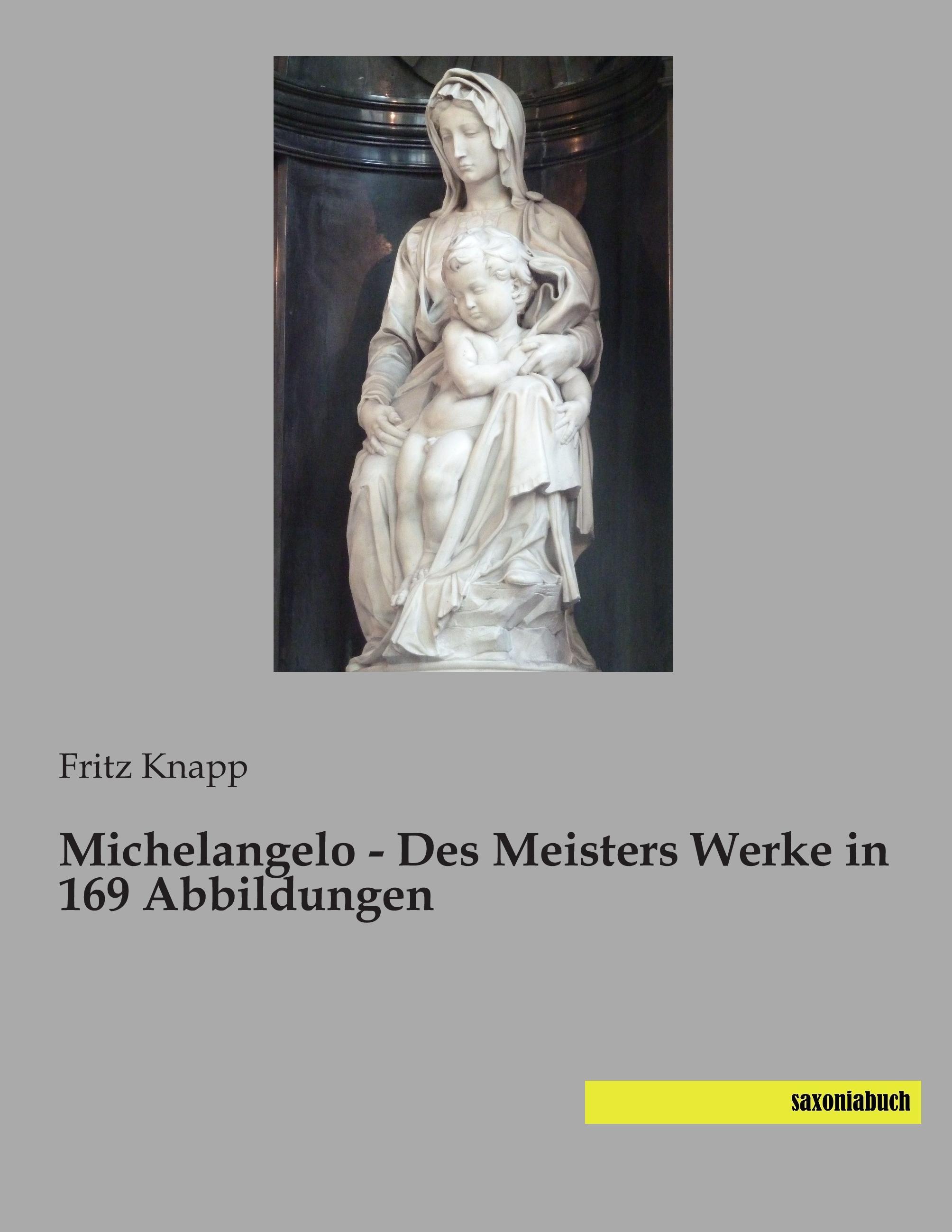 Michelangelo - Des Meisters Werke in 169 Abbildungen Fritz Knapp