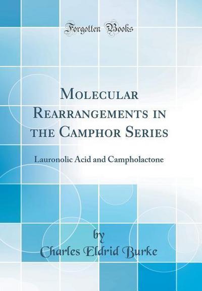 Molecular Rearrangements in the Camphor Series: Lauronolic Acid and Campholactone (Classic Reprint)