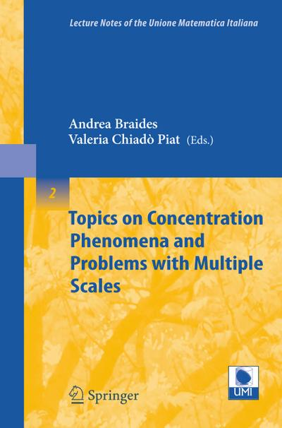 Topics on Concentration Phenomena and Problems with Multiple Scales