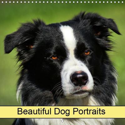 Beautiful Dog Portraits (Wall Calendar 2019 300 × 300 mm Square)
