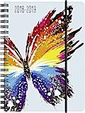 Brunnen Schülerkalender 2018/2019, Schmetterling