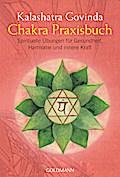Chakra Praxisbuch