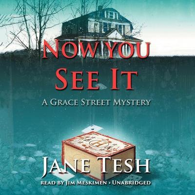 Now You See It: A Grace Street Mystery