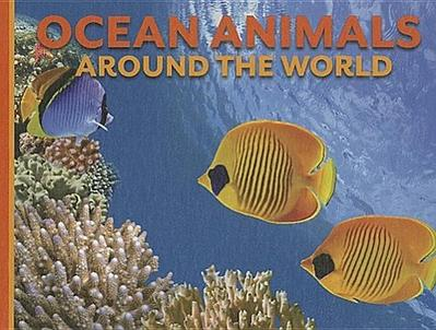 Ocean Animals Around the World