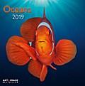 Oceans 2019 Broschürenkalender