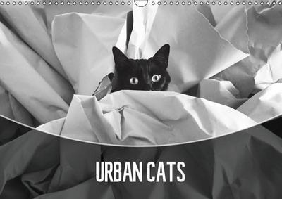 Urban Cats (Wall Calendar 2019 DIN A3 Landscape)
