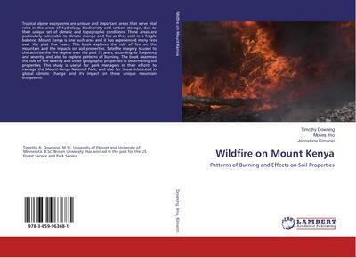 Wildfire on Mount Kenya