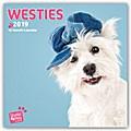 Westies - West Highland White Terrier 2019 - 18-Monatskalender