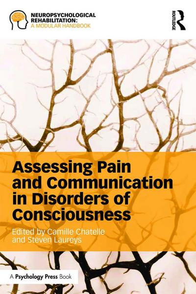 Assessing Pain and Communication in Disorders of Consciousness