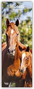 Horses - Pferde 2019