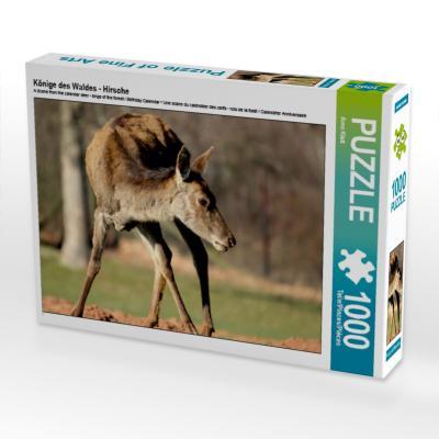 Könige des Waldes - Hirsche (Puzzle)