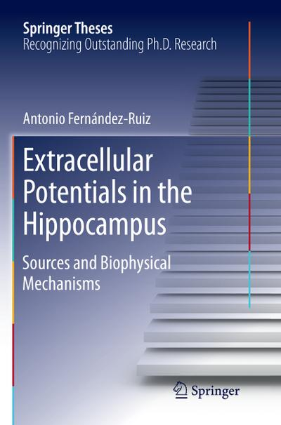 Extracellular Potentials in the Hippocampus