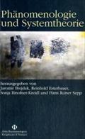 Phänomenologie und Systemtheorie