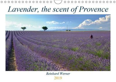Lavender, the scent of Provence (Wall Calendar 2019 DIN A4 Landscape)