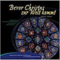 Bevor Christus zur Welt kommt. Fensterbild-Advents-Kalender