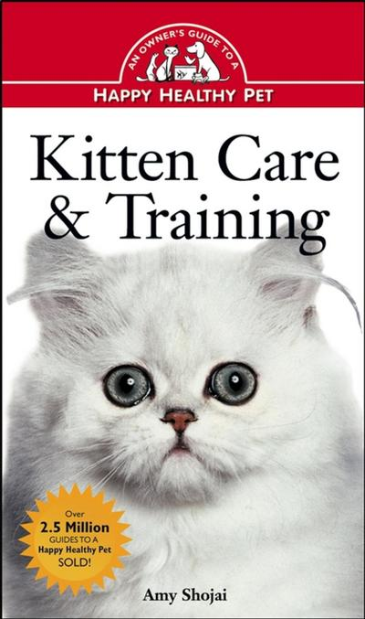 Kitten Care & Training