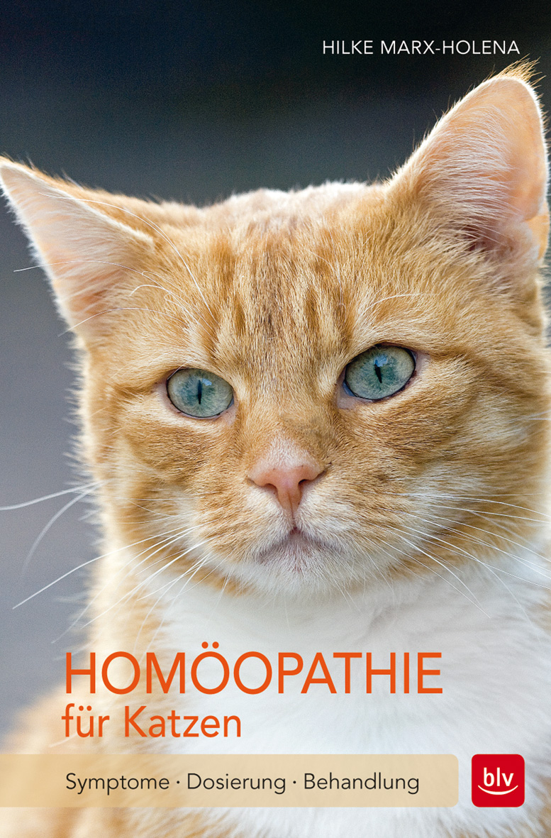 NEU Homöopathie für Katzen Hilke Marx-Holena 415409
