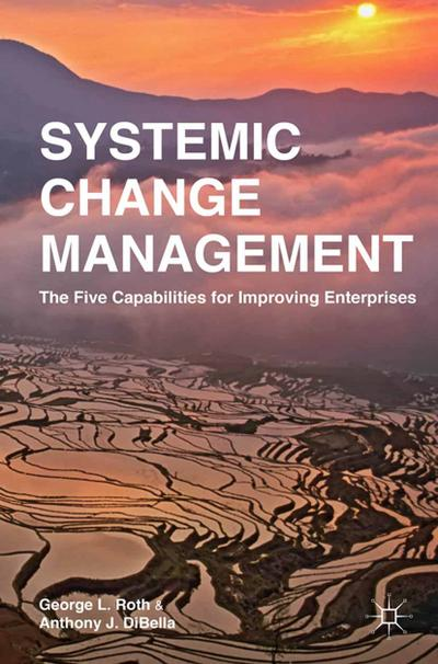 Systemic Change Management