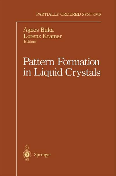 Pattern Formation in Liquid Crystals