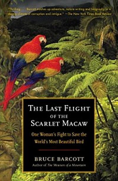 Last Flight of the Scarlet Macaw
