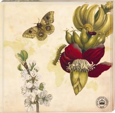 Kew Gardens - Untersetzer Motiv Schmetterling