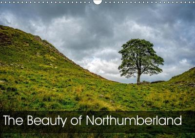 The Beauty of Northumberland (Wall Calendar 2019 DIN A3 Landscape)