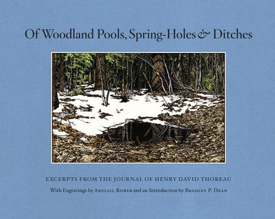 Of Woodland Pools, Spring-Holes and Ditches