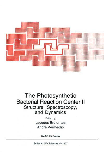 Photosynthetic Bacterial Reaction Center II