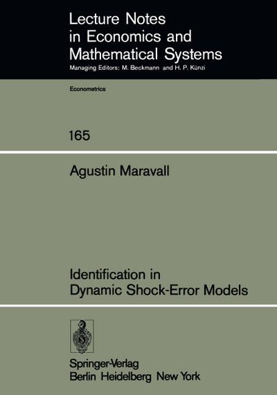 Identification in Dynamic Shock-Error Models